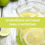 10 remédios naturais para o intestino